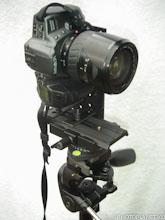 A-Propos-tetepano2003