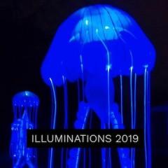 Illuminations 2019 – Jardin des plantes