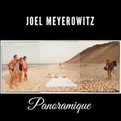 Joel Meyerowitz – Panoramique